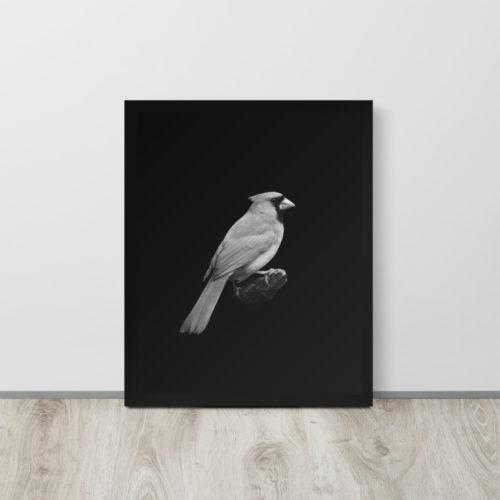 Framed Art Print B&W Cardinal